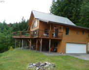 211 SWIFT VIEW  DR, Cougar image