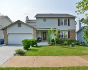 3761 Lemay Woods  Drive, St Louis image