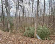 2520 Treehouse Ln, Sevierville image