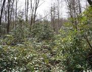 Tbd Turtle Pond Road, Highlands image
