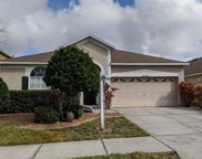 14341 Moon Flower Drive, Tampa image