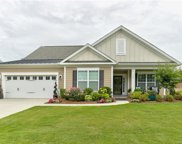 156 Hawks Creek  Parkway, Fort Mill image