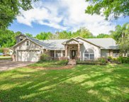 802 Silver Rose Court, Lake Mary image