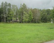 Lot 43 Blueberry, Pine Twp - MER image