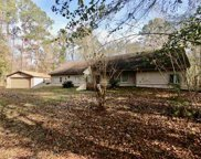 1459 Silver Pine, Tallahassee image