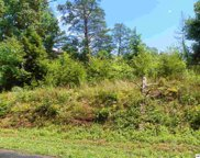 1430 Red Cedar Lane, Sevierville image