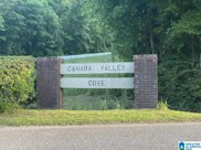 5312 Cahaba Valley Cove Unit --, Birmingham image