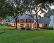 10403 Down Lakeview Circle, Windermere image