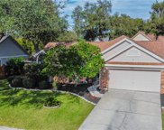 3539 Rolling Trail, Palm Harbor image