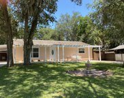 1823 Needle Palm Drive, Edgewater image