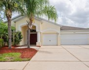 25613 Risen Star Drive, Wesley Chapel image