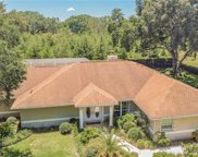 1417 Pope Place, Lutz image