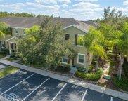 8537 Brushleaf Way, Tampa image