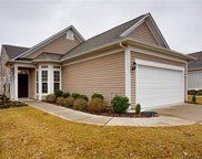 23170  Whimbrel Circle, Indian Land image