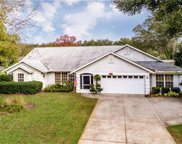 2719 Bayview Drive, Eustis image