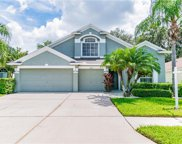 30607 Lanesborough Circle, Wesley Chapel image