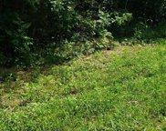 3.98 Lands Rd, Madisonville image