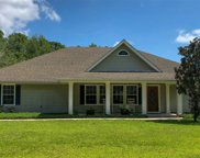 718 Bloxham Cutoff Road, Crawfordville image