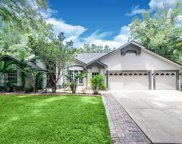 914 Shaded Water Way, Lutz image