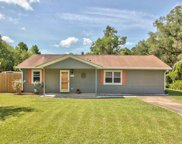 7667 Talley Ann, Tallahassee image