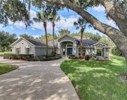 11728 Osprey Pointe Boulevard, Clermont image