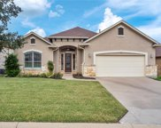 829 Caprock Canyon Trail, Georgetown image