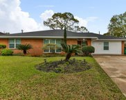 10814 Endicott Lane, Houston image