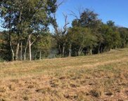 25 ACRES Boyds Creek Highway ( Off ), Sevierville image