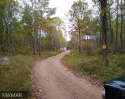 32021 480th Street, Cass Lake image