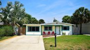 332 Tyler, Cape Canaveral image