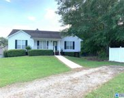 6498 Water Works Rd, Mount Olive image