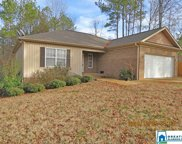 1144 Baylor Ct, Pell City image