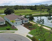 6309 Mighty Eagle Way, Sarasota image