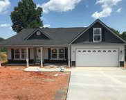 435 Silver Thorne Dr - Lot 11, Wellford image