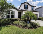 12377 Streambed Drive, Riverview image