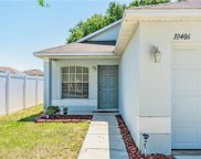 10406 River Bream Drive, Riverview image