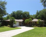 1628 Regal Oak Drive, Kissimmee image