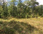 6224 Ocqueoc Lake Road Unit Lots 1 & 2, Ocqueoc image