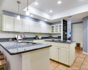 14032 Mint Trail Dr, San Antonio image