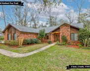 3448 Gallant Fox, Tallahassee image