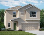 10231 Boggy Moss Drive, Riverview image