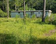 858 LOVERS LN, Green Cove Springs image