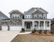 2221  Brandybuck Court, Fort Mill image