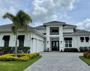 17392 Blue Sapphire  Drive, Fort Myers image