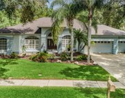3897 Drayton Way, Palm Harbor image