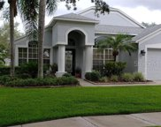 10355 Lightner Bridge Drive, Tampa image