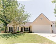 217 Ibis Lane, Goose Creek image