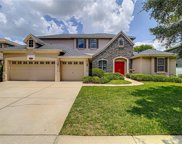 2109 Houndstooth Drive, Tampa image