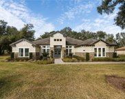 32043 Red Tail Boulevard, Sorrento image