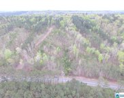 Mountain View Rd Unit 9.33 Ac, Odenville image